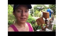 Lifou, Wyspy Lojalności, Nowa Kaledonia HD (1080p, 60 fps)
