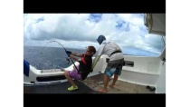 fighting a monster in New Caledonia