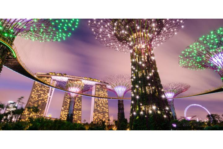 Kinh nghiệm tham quan Garden by The Bay Singapore - Phuotvivu