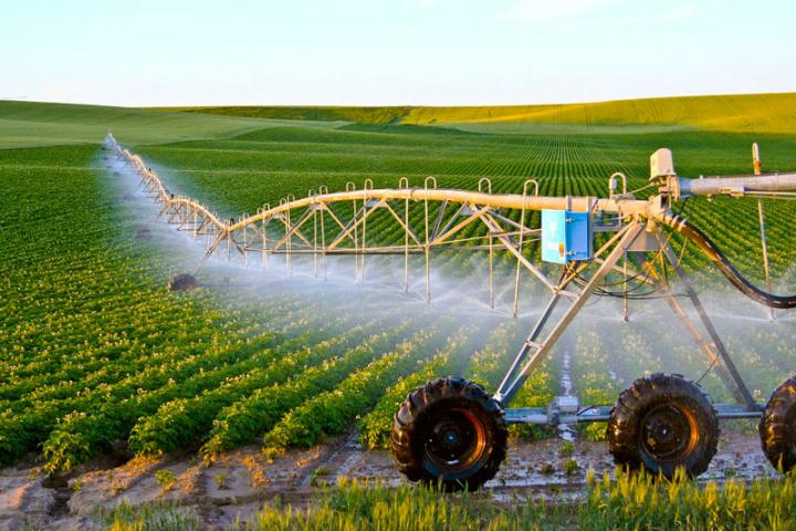Nông nghiệp công nghệ cao: Phát triển theo xu hướng của công nghệ 4.0