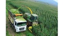 Để nông nghiệp bắt nhịp khoa học công nghệ - Báo Đại Đoàn Kết