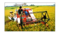 Cần tăng cường ứng dụng khoa học công nghệ vào sản xuất nông nghiệp ...