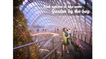 Kinh nghiệm đi thăm vườn - Garden By The Bay Singapore - 2017 - full