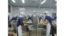 TP.HCM có 300 doanh nghiệp khoa học công nghệ vào năm 2020