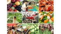 Chuỗi cung cấp thực phẩm an toàn: Bắt đầu từ khâu sản xuất