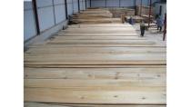 CÔNG TY TNHH XNk V&P VIỆT PHÁT chuyên cung cấp gỗ công nghiệp các loại