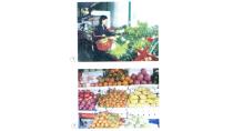 Lớp 4 - Bài 10 - Ăn nhiều rau và quả chín - Sử dụng thực phẩm sạch ...
