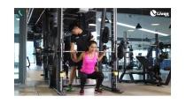 Hướng dẫn tập gym cho người mới tập - Tập thân dưới - YouTube