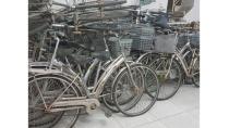 Bán xe đạp cũ martin 107,asama giá rẻ 17742974 | Rongbay.com