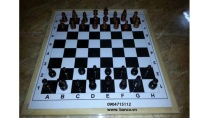 Hướng dẫn chơi cờ vua cho người chưa biết chơi