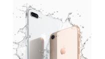 iPhone 8 Plus có chống nước không? Có sử dụng khi đi bơi được không?