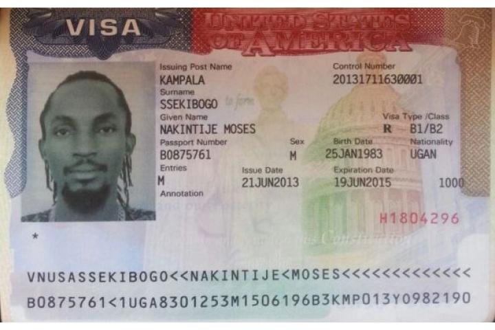 nonimmigrant visa types usa