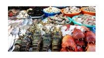 Hải Sản Bình Dương Tươi Sống Sạch Như ở Cảng Vừa đánh Bắt