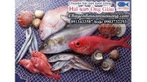 Mua Hải Sản Tươi Sống Tại Quảng Ninh đảm Bảo Chất Lượng