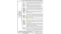 Sơ đồ hóa kiến thức cơ bản môn Giáo dục công dân lớp 12 - Bài 6