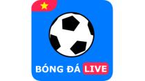 Bóng Đá Live APK 1.1.23 - download free apk from APKSum