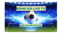 Bongdalive tv xem bóng đá live hd chất lượng cao nhanh nhất - KEO.BET