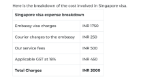 How I got my Singapore visa in Bangalore for Free !! - VISA MALAYSIA