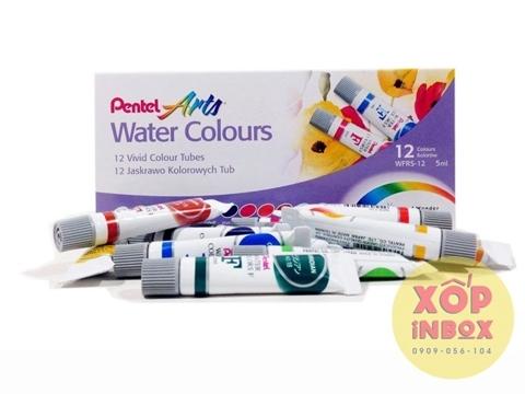 Màu nước Pentel Water Colors tuýp 12 màu (5ml)